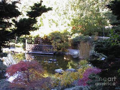 Photograph - Hakone Gardens 1 by Laura Hamill
