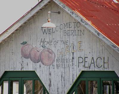 Photograph - Hale Peach - Berlin Maryland by Kim Bemis