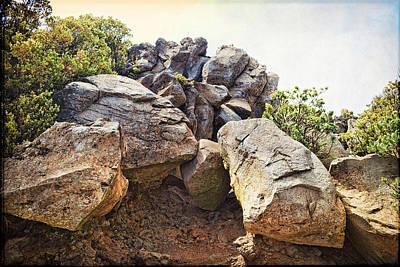 Photograph - Haleakala Castoffs by Paulette B Wright