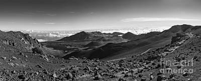 Sheep - Haleakala Summit by Jamie Pham