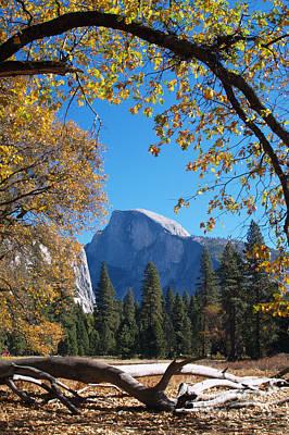 Half Dome In Yosemite Art Print by Alex Cassels