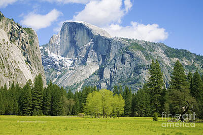 Photograph - Half Dome by Richard J Thompson