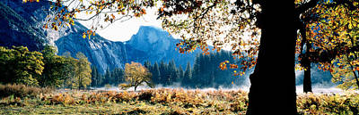 High Sierra Photograph - Half Dome, Yosemite National Park by Panoramic Images