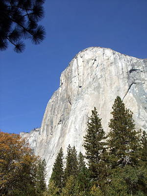 Photograph - Half Dome Yosemite by Richard Reeve