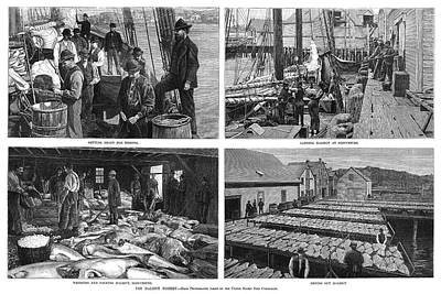 Packing Painting - Halibut Industry, 1888 by Granger