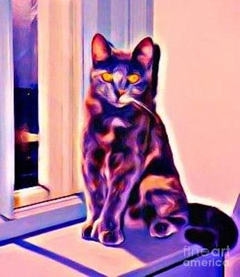 Jsm Fine Arts Halifax Digital Art - Halifax Cat by John Malone