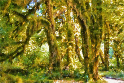 Olympic National Park Digital Art - Hall Of Mosses by Kaylee Mason