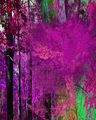 Digital Art - Hallie's Forest by Betsy Jones