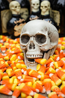 Buffet Photograph - Halloween Candy Corn by Edward Fielding
