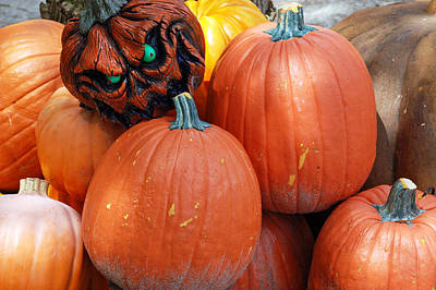 Photograph - Halloween Goblin by Aimee L Maher ALM GALLERY