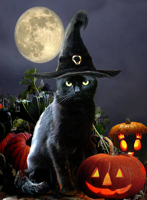 Animals Paintings - Witchy black Halloween Cat by Regina Femrite