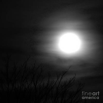 Digital Art - Halloween Moon Bw by Tim Richards