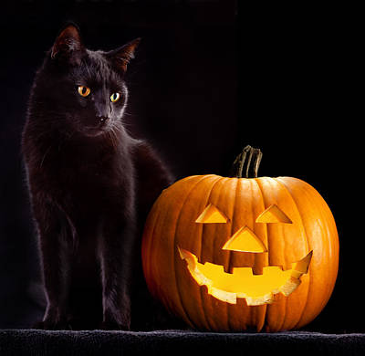 Halloween Pumpkin And Cat Art Print