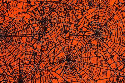 Photograph - Halloween Spiderwebs by Patrice Zinck