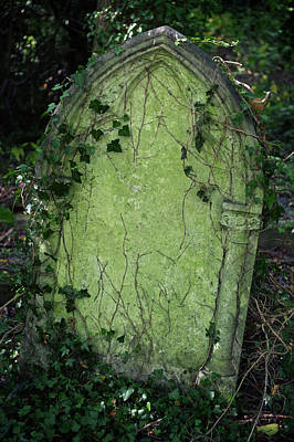 Photograph - Halloween Tombstone Vine Covered by Peskymonkey