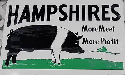 Profit Mixed Media - Hampshire Hog by Nelson Skinner
