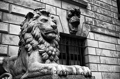 Hamburg Rathaus Lion Mono Art Print