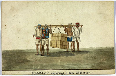 Hammals Carrying A Bale Of Cotton Print by British Library