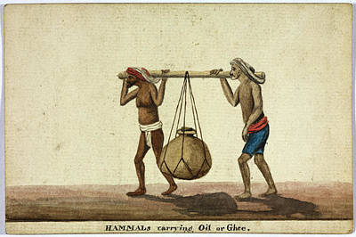 Watercolour Photograph - Hammals Carrying Oil Or Ghee by British Library