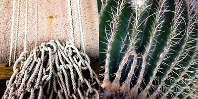 Photograph - Hammock Cactus by Marlene Burns