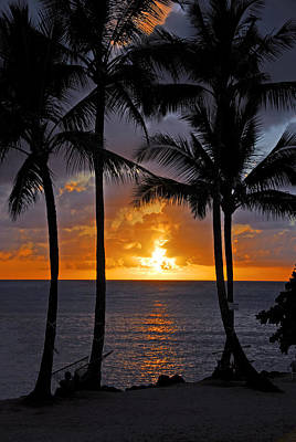 Photograph - Hammock Sunset by Lynn Bauer