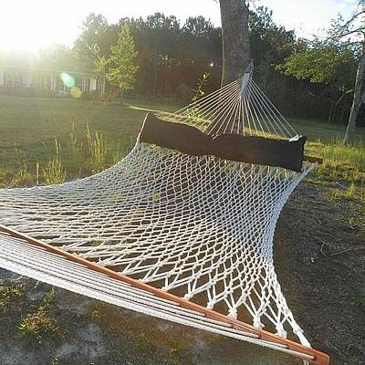 Photograph - Hammock Time by Lisa Wooten