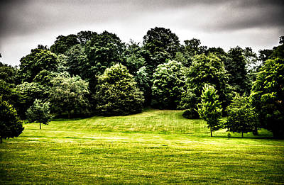 Photograph - Hampstead Heath Greens by Lenny Carter