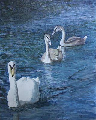 Hampton Swans Art Print