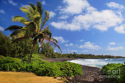 Photograph - Hana Beach by Inge Johnsson