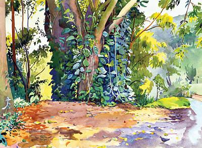 Hana Ivy/vine Tree Art Print by Don Jusko