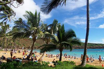 Hanauma Bay Beach Art Print