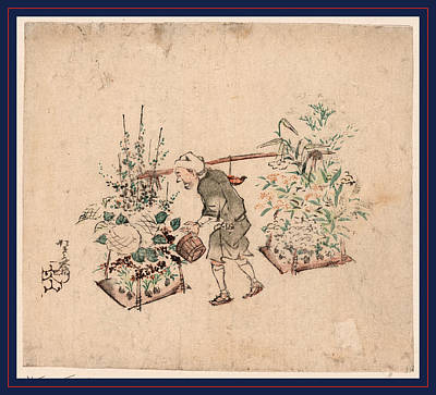 Pole Drawing - Hanauri, Flower Vendor. Print Shows A Man Watering Flowers by Japanese School