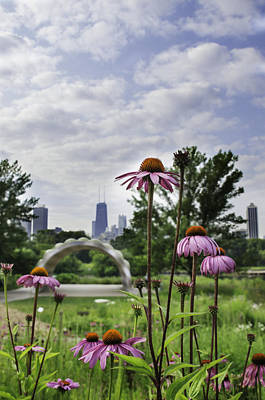 Photograph - Hancock As Seen Through Flowers by Michael  Bennett