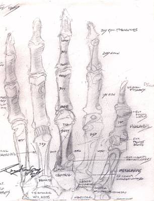 Drawing - Hand Anatomy Sketchbook by Rebecca Tacosa Gray