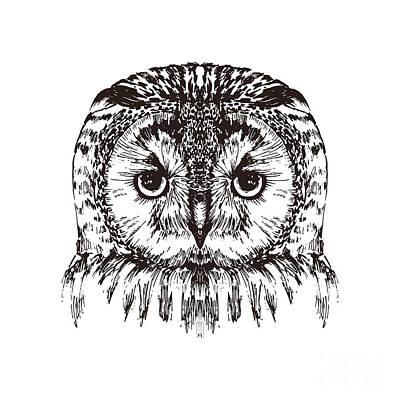Zoo Wall Art - Digital Art - Hand Drawn Owl Portrait, Vector by Melek8