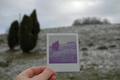 Photograph - Hand Holding Polaroid - Concept Image For Memory Or Time Or Past by Matthias Hauser