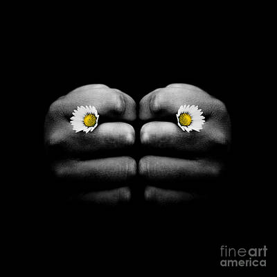 Flower Express Photograph - Hand Holding Two Small Daisy Flowers In Knuckles  by Miroslaw Oslizlo
