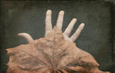 Hand Of Nature Art Print