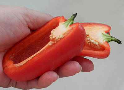 Photograph - Hand Over The Peppers by Grace Dillon