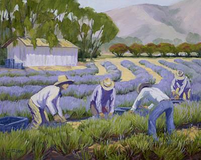 Hand-picked Lavender Original by Jane Thorpe