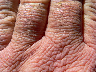 Photograph - Hand Wrinkles by Jeff Lowe