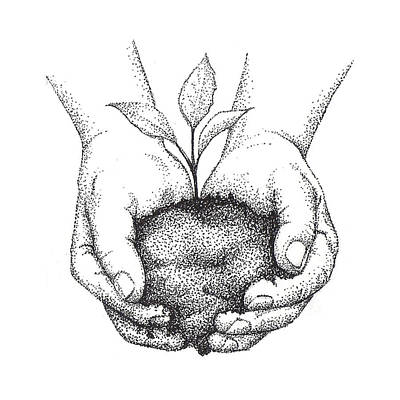 Earth Drawing - Hands Holding Seedling by Christy Beckwith
