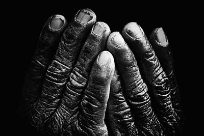 Life Story Photograph - Old Hands With Wrinkles by Skip Nall
