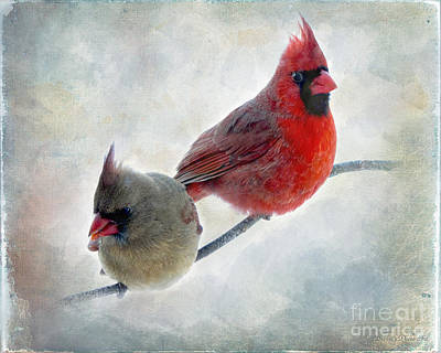Handsome Couple IIi Art Print by Debbie Portwood