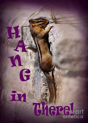 Photograph - Hang In There Chipmunk by Karen Adams