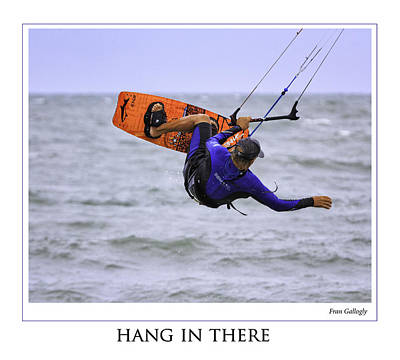 Photograph - Hang In There Poster by Fran Gallogly