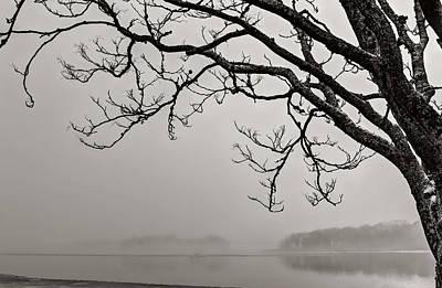Winter Photograph - Hang Over by Digital  Illumination LLC