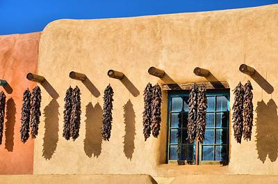 Hanging Around In Taos Art Print