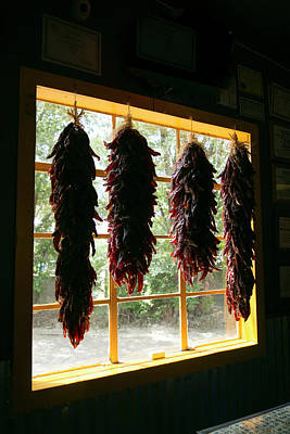 Hanging Dried Red Chilies Backlit Art Print