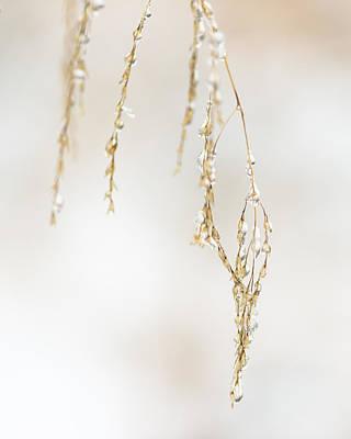 Hanging Frozen Grass Virtical Art Print